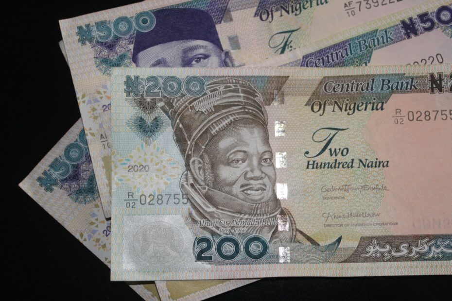 an image of naira notes - how to save costs in facility management